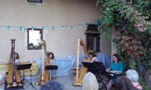 harp-zang-cursus-1024x614